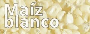 maizblanco